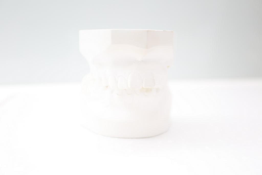 牙齒 刷牙,蛀牙 費用,齒列矯正 推薦,拔牙 戴多久,臉型 蛀牙,虎牙 戴牙套,臉型 虎牙,拔牙 費用,刷牙 維持器,種類 齒顎矯正